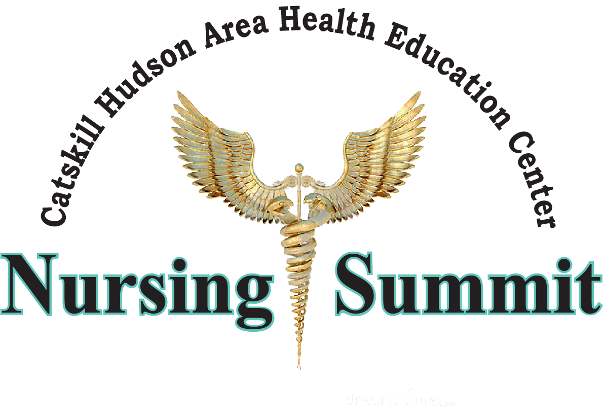 Nursing Summit Logo