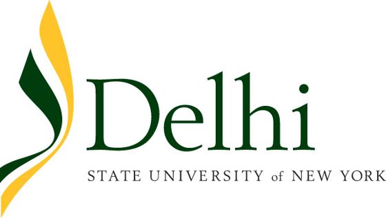 Delhi State University Logo